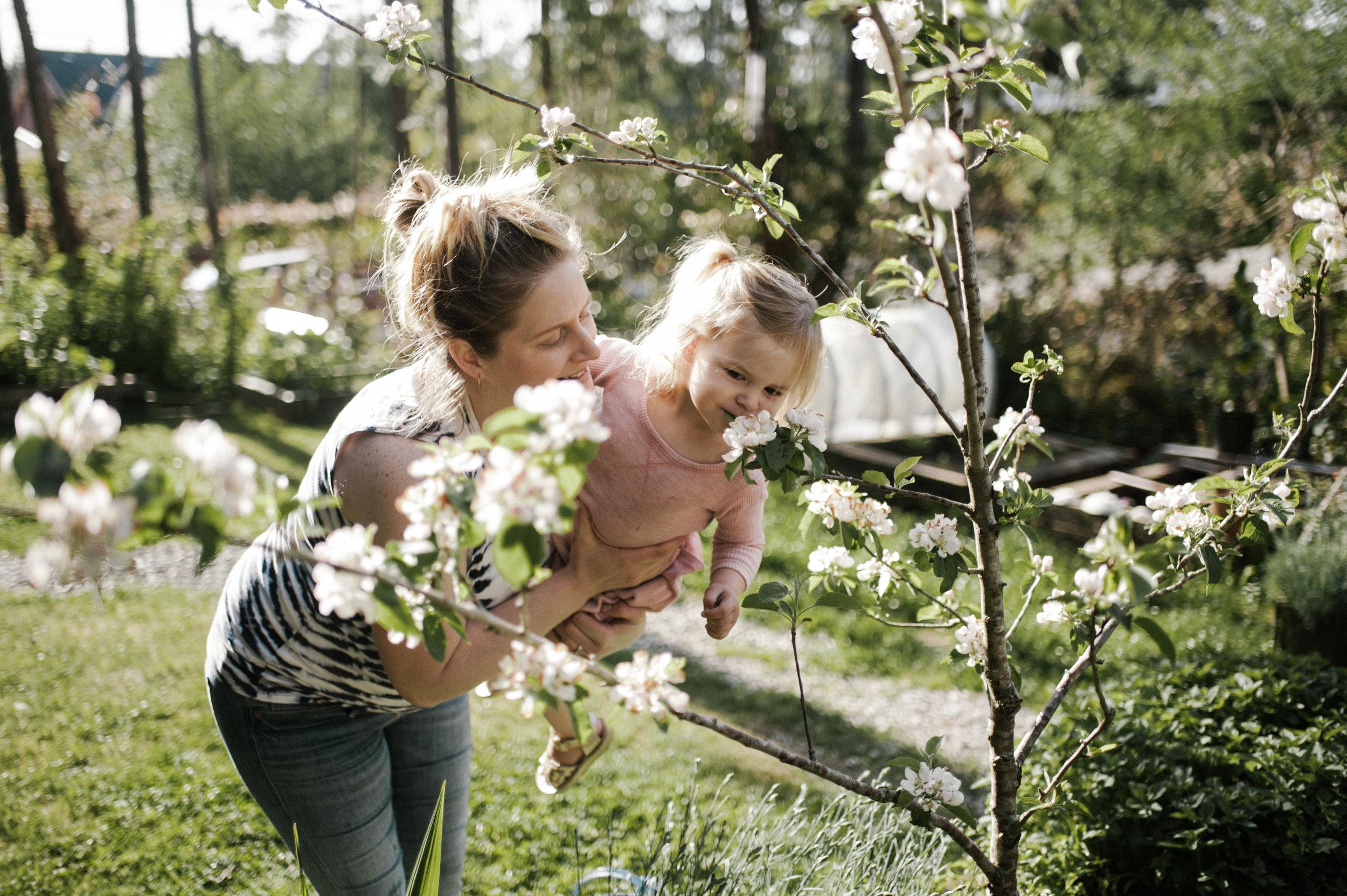 garden-97.jpg
