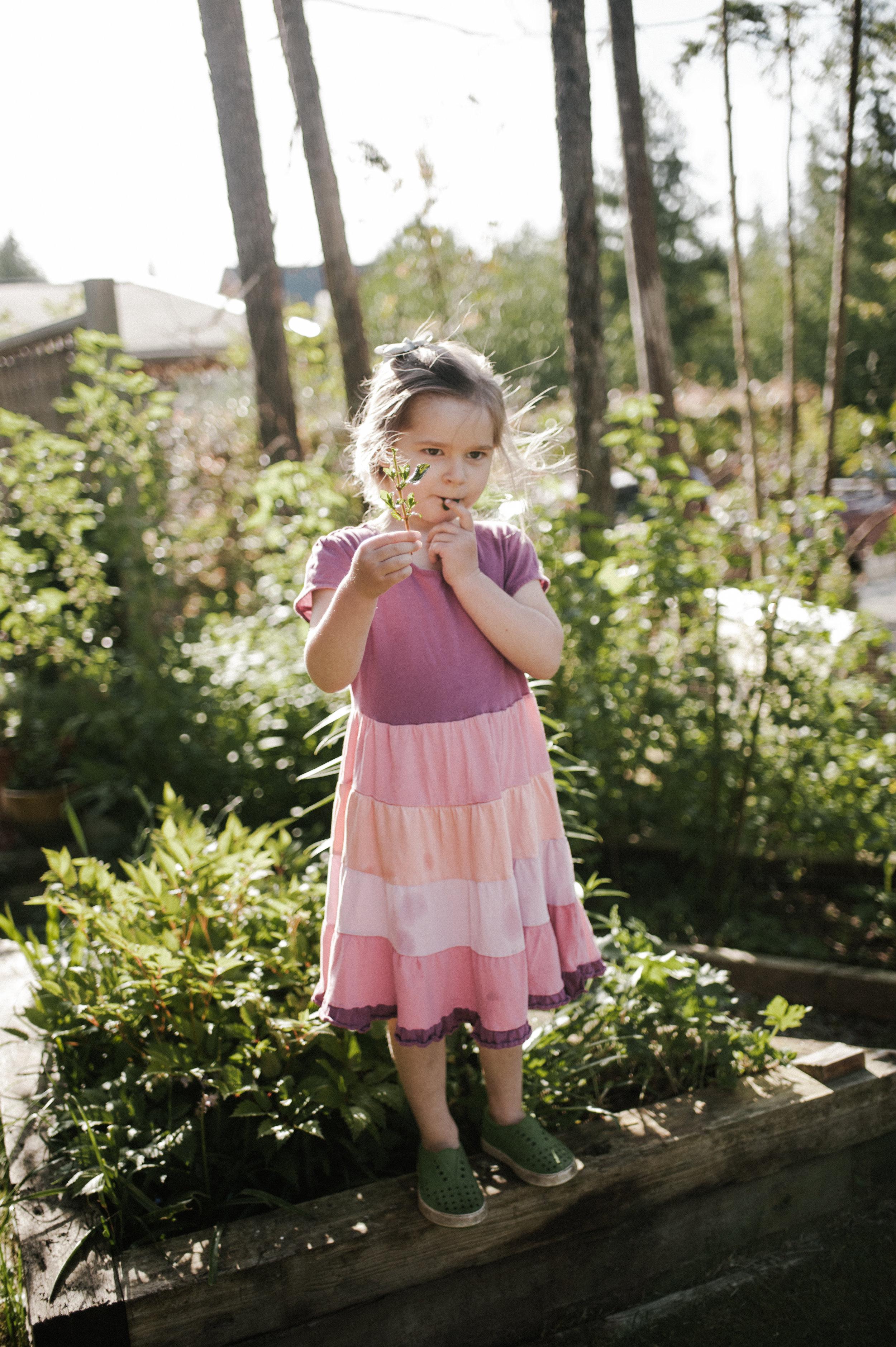 garden-106.jpg