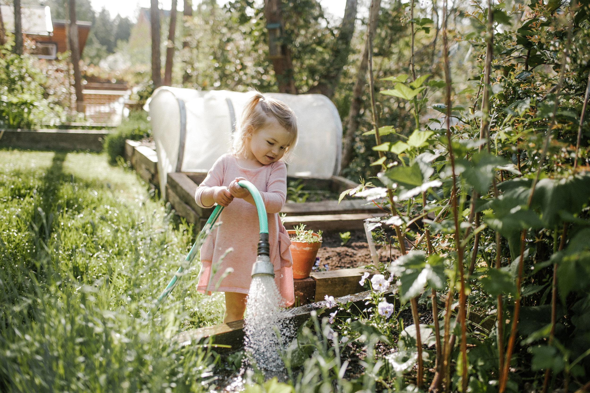 garden-155.jpg