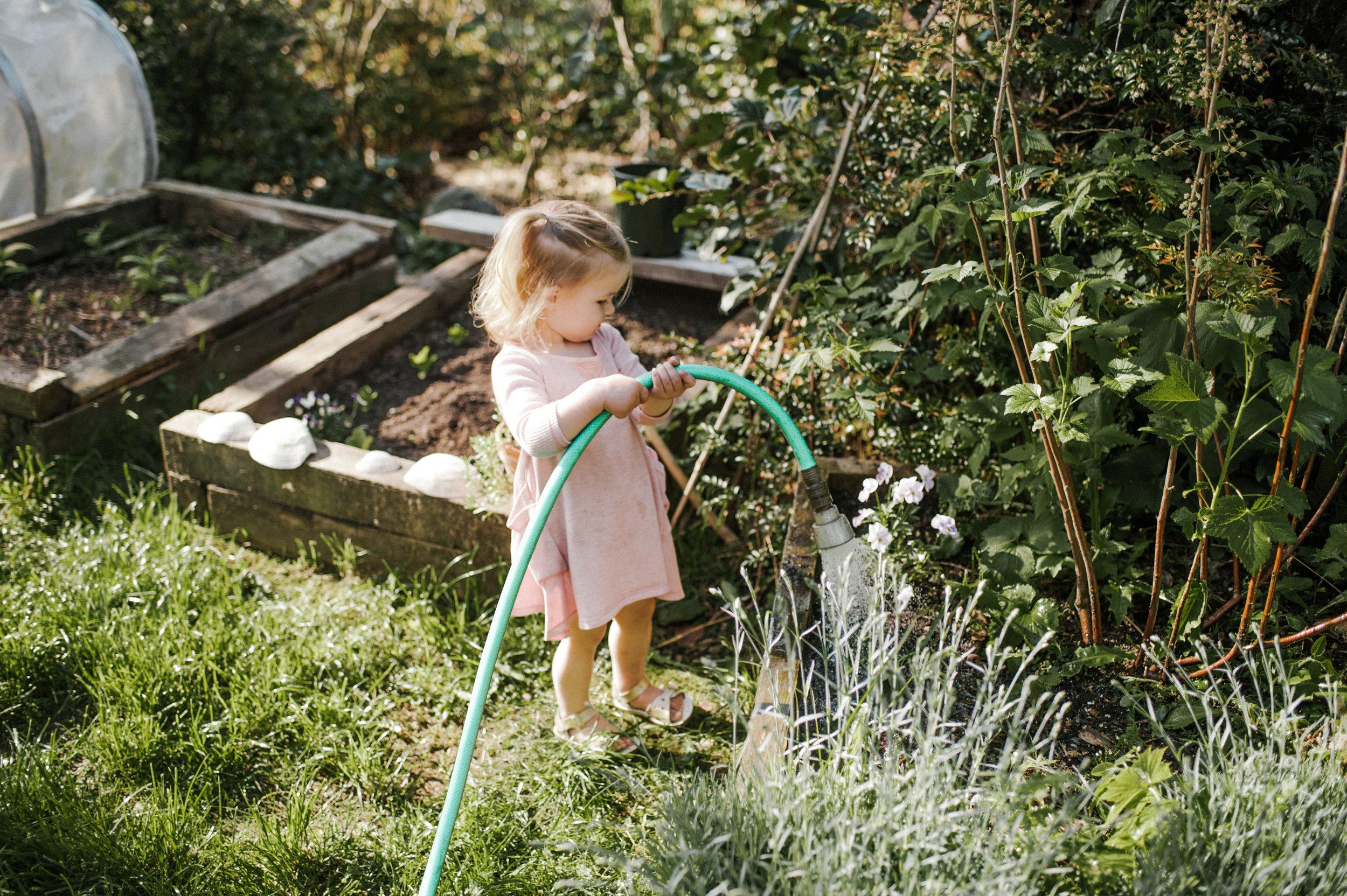 garden-151.jpg