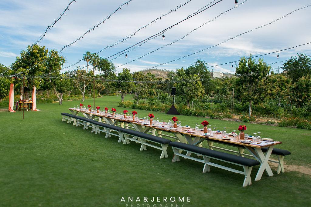 Mango Grove | Flora Farms | Karla Casillas and Co.