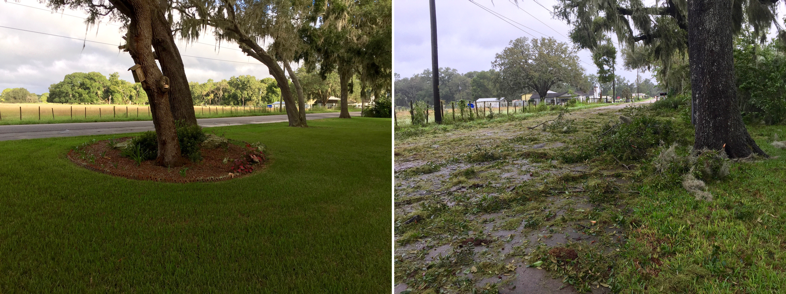 The western side of the Marston backyard, Saturday morning before Hurricane Irma and the Monday morning after. (Glenn Marston)