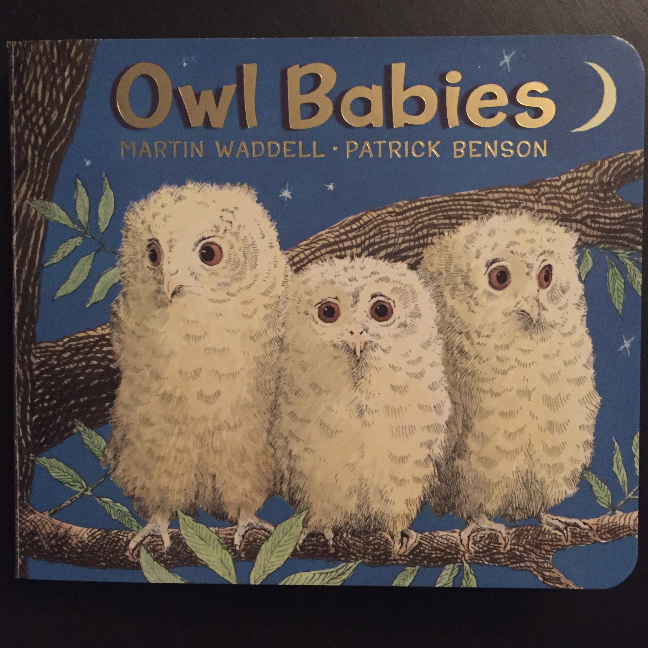 Review - Owl Babies