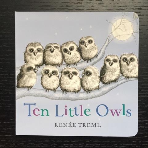Review - Ten Little Owls