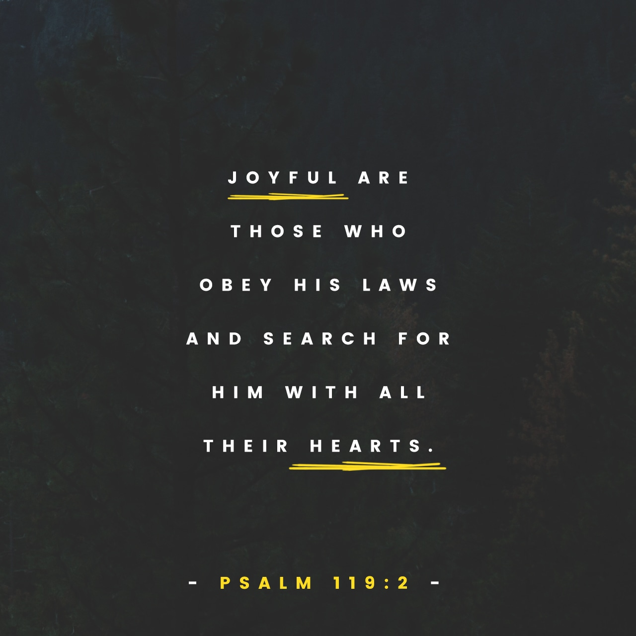 ScriptureArt_0717_-_Psalm_119_2_NLT_English.jpg