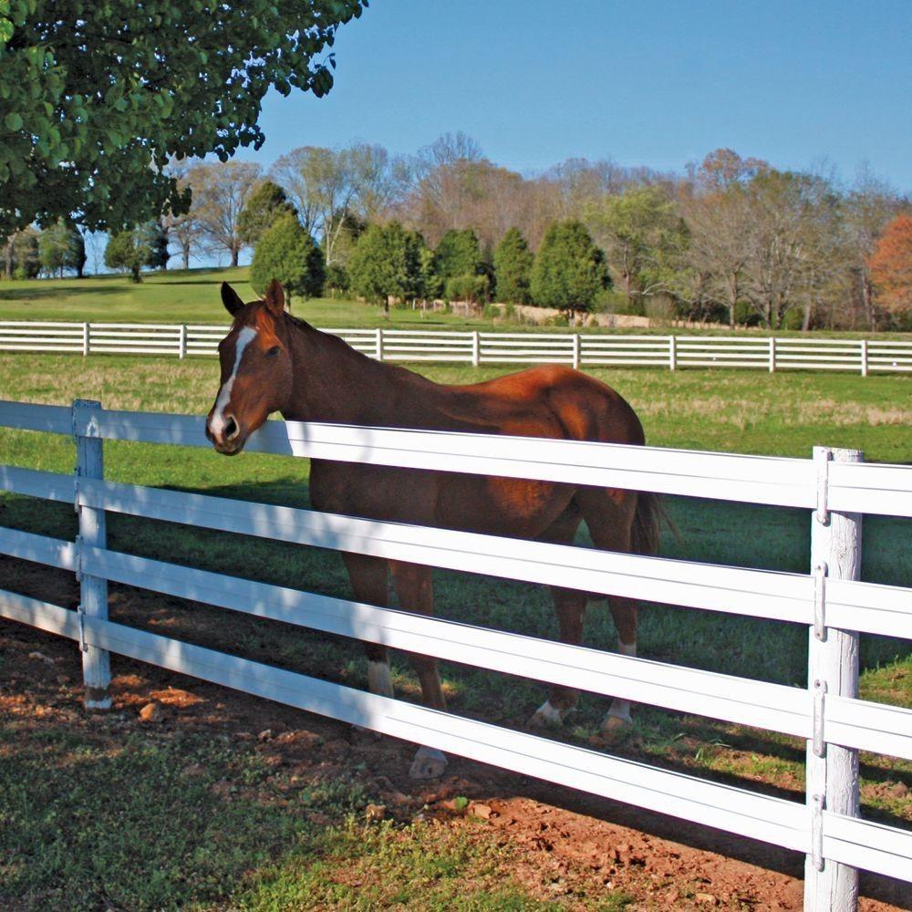 centaur_fencing_cenflex_5_in._x_330_ft._flexible_rail_horse_fence_381055_white3_1.jpg