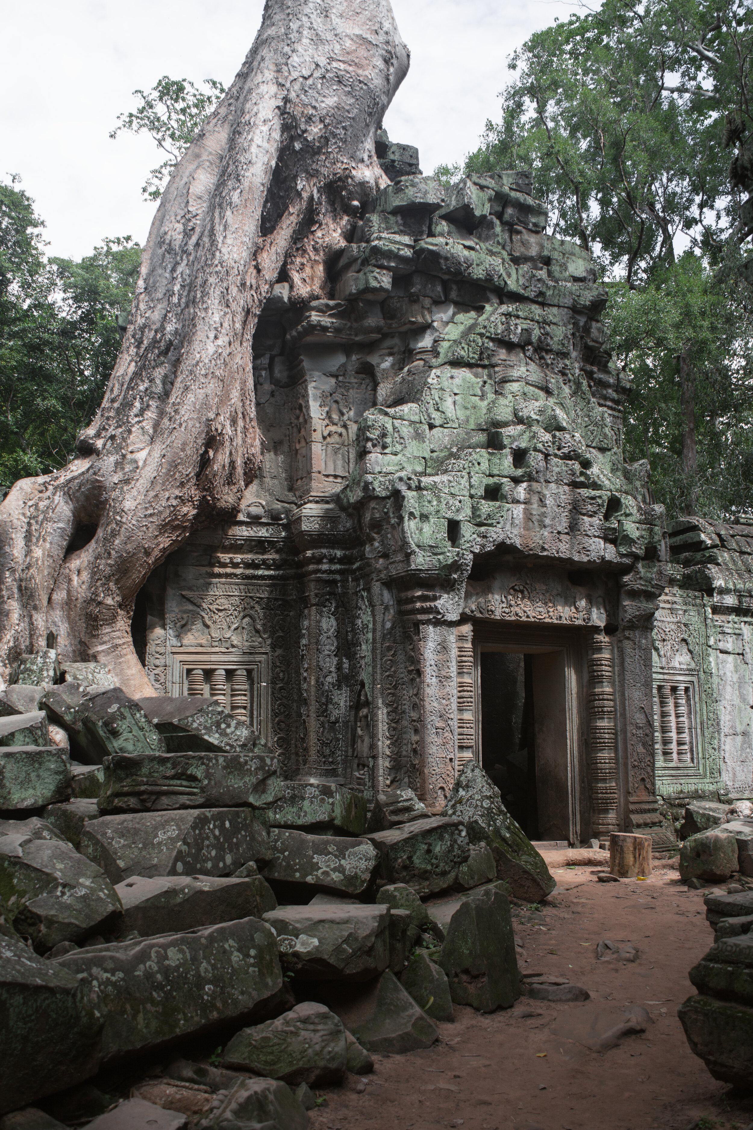 Angkor Wat VI