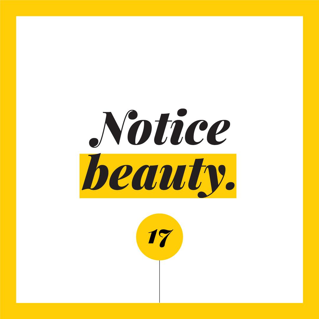 Notice-beauty.jpg