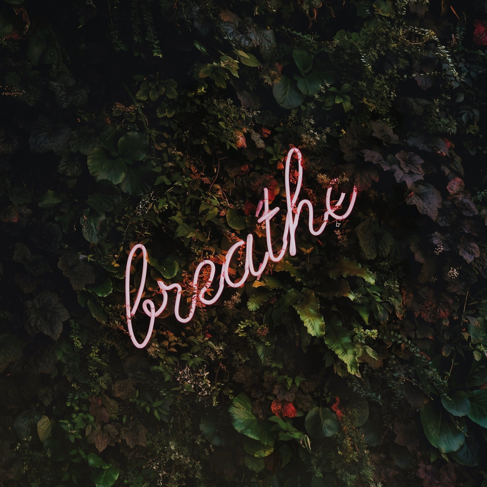 Breathe+Large.jpg
