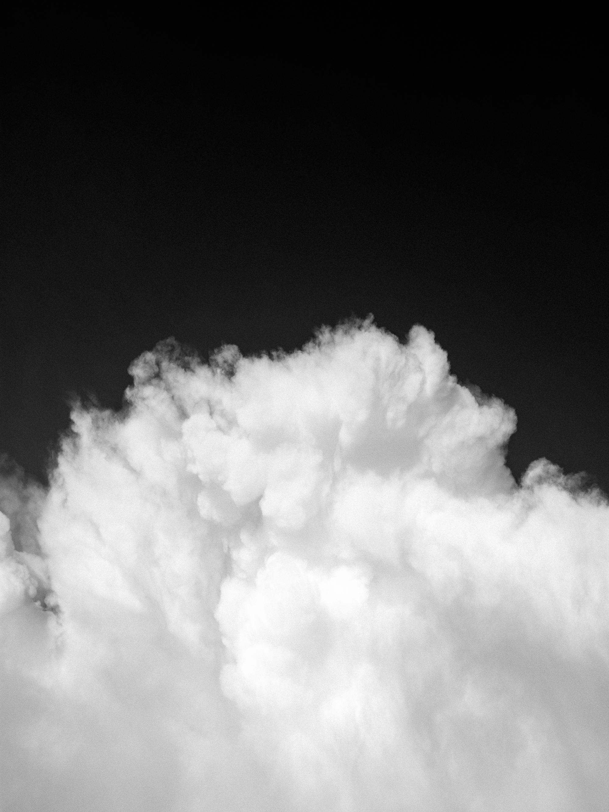 TWP-KarlAntonBjorkman--5.jpg