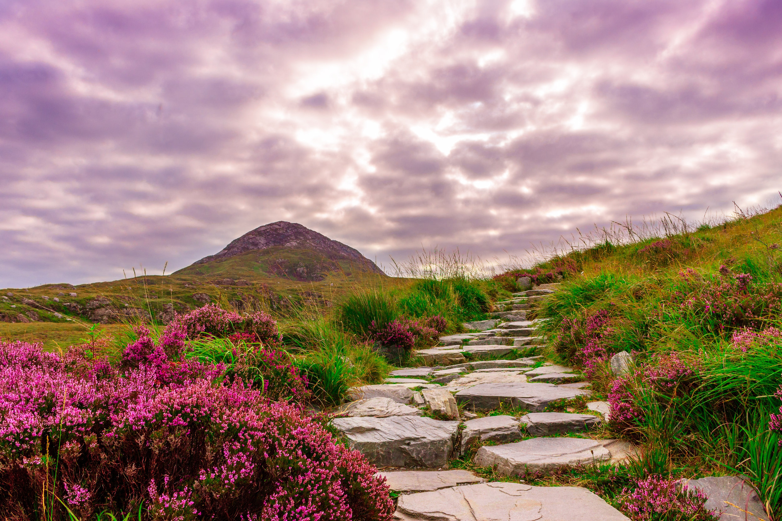 Canva - Ireland, National Park, Hiking, Away, Steinweg, Stones.jpg