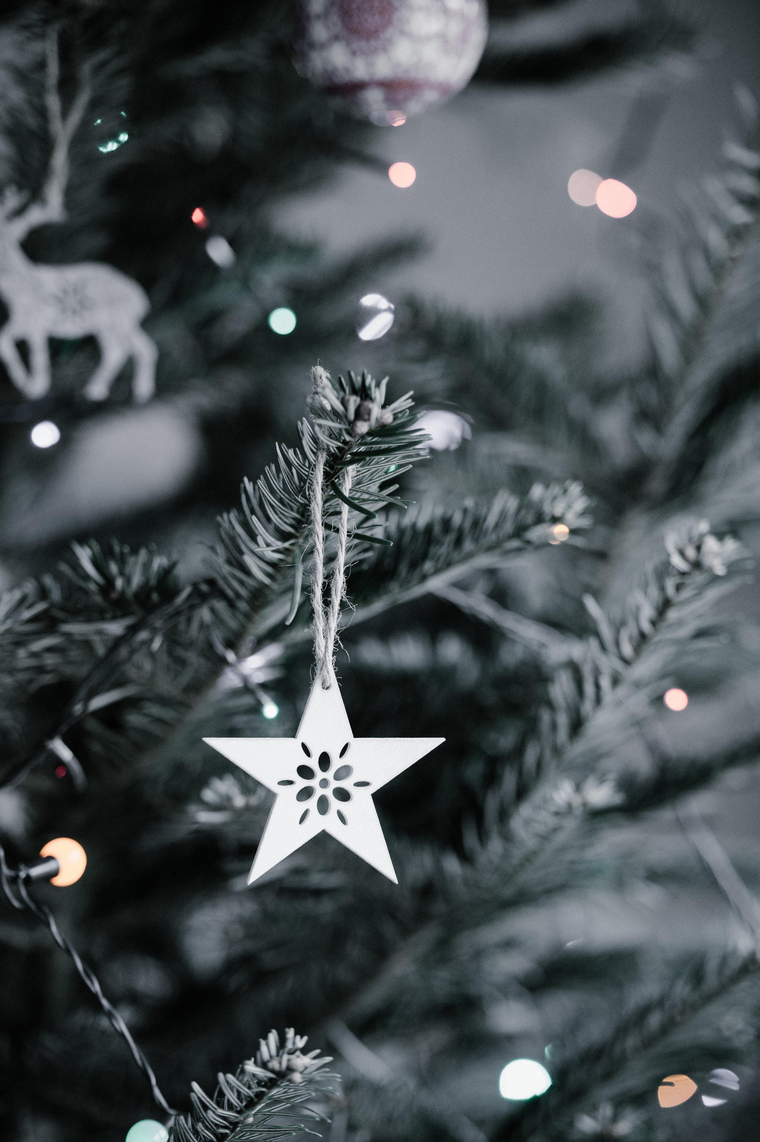 Christmas Carol Concert - Sunday 16th December, 7.30pm College Theatre, P.B.C., The Mardyke