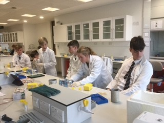 dna workshop ucc 4.jpg