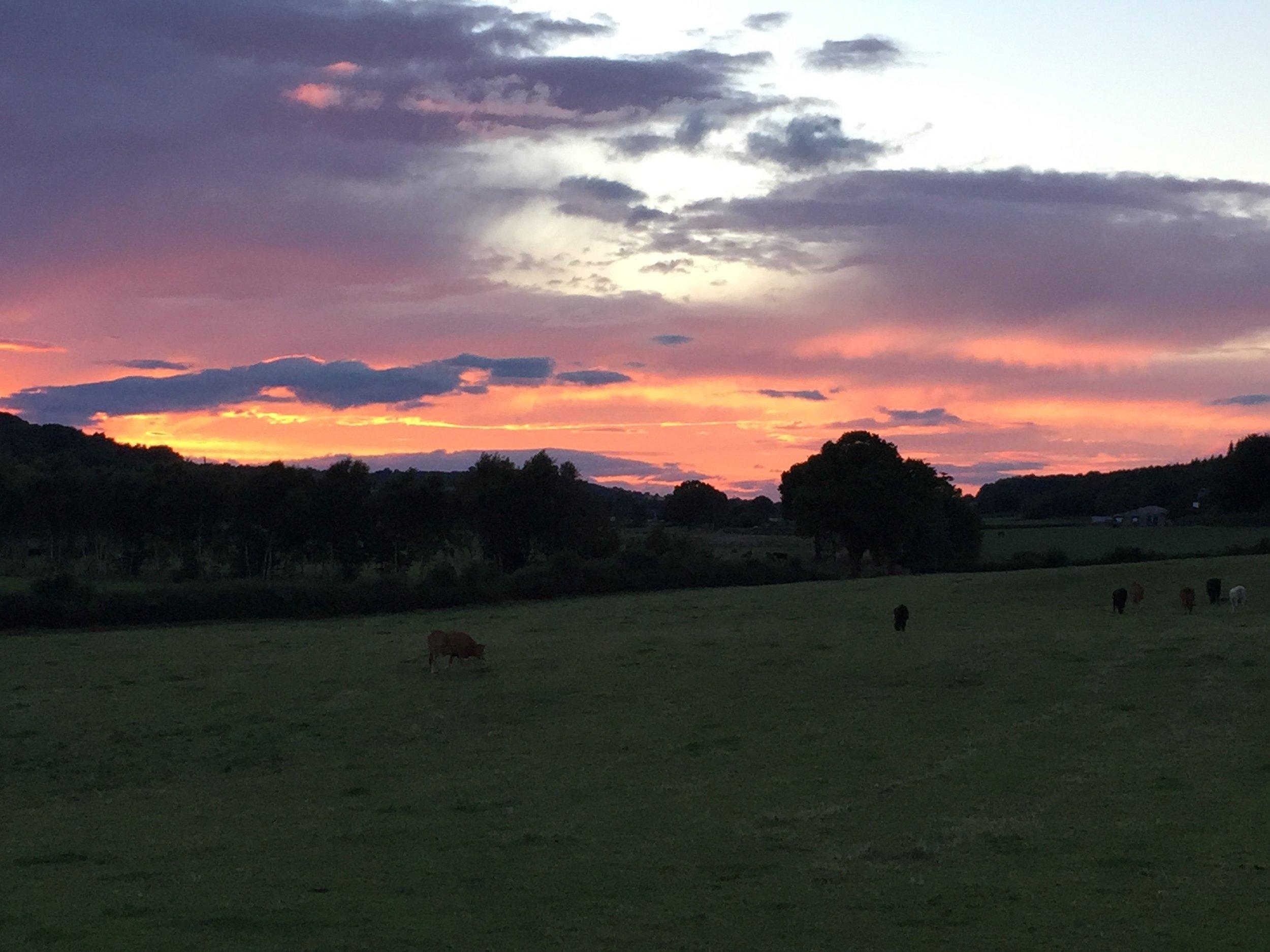 HS2 sunset.jpg