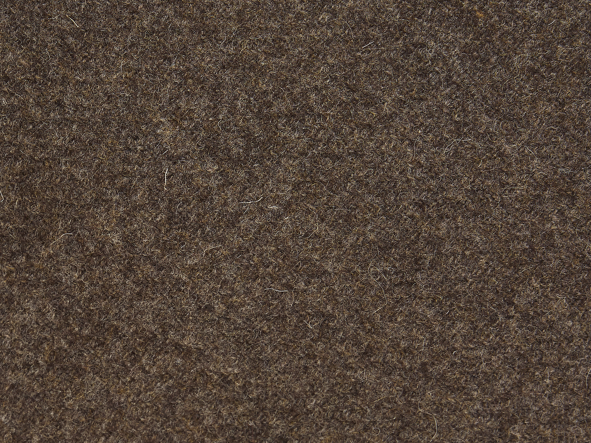 ITEM-26_BROWN_03.jpg
