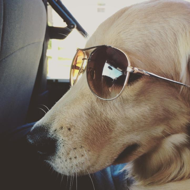 We Jeepin'