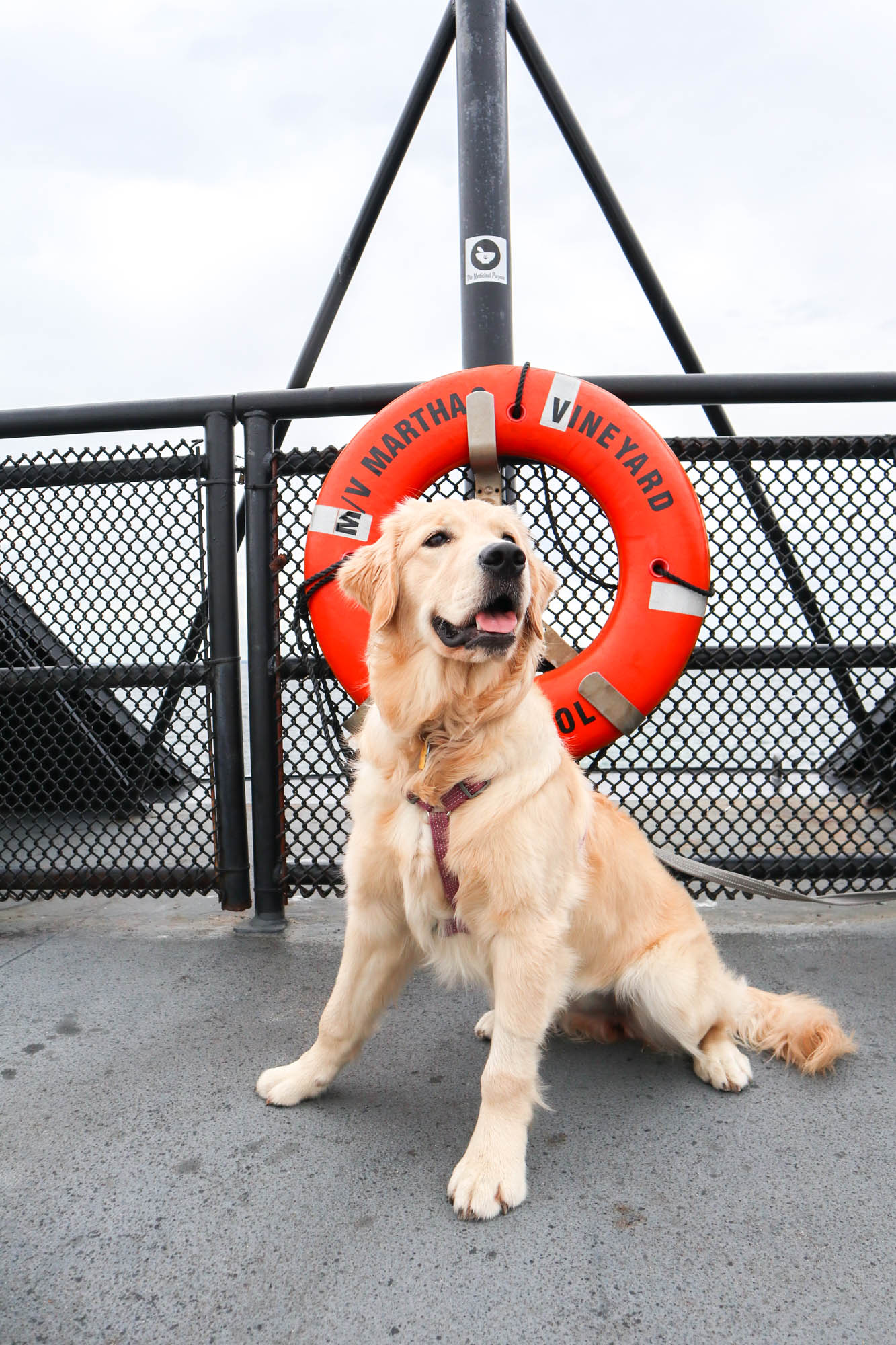 Captain Lucy trying to earn her Sea Legs!