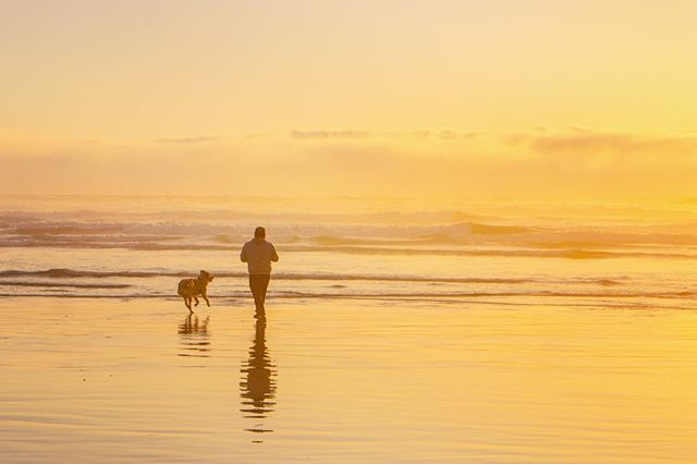 The best adventures are the ones that are shared 👫🐕❤️. .......... Spending time with my wife and running on the beaches with Lucy were the highlights of our trip. My wife and I have always had stuff to talk about, but it is nearly impossible to run out of things to talk about on date night now. It sounds kind of weird, but in our past life we would discuss work, work drama, family, and what other people were doing. It was easy to pull out our phones and not focus on each other. Our date nights and conversations have changed so much that sometimes I think to my self and wonder, what the hell were we doing before 🤦♂️? Here's hoping that you and your loved ones plan and awesome adventure on your next date night. 😆 . . . . . . . . . . #vanlife #travato #winnebagolife #travel #adventure #adventuretime #adventureawaits #lifegoals #alwaystravel #picoftheday #photooftheday #adventurephotography #adventurephotoshoot #camping #peace #peaceandquiet #beautiful #perfectday #perfectspot #cannonbeach #oregon #waterdog #goldenretriever #sunset #love #sunset_pics #beachrun #datenight #lovedones