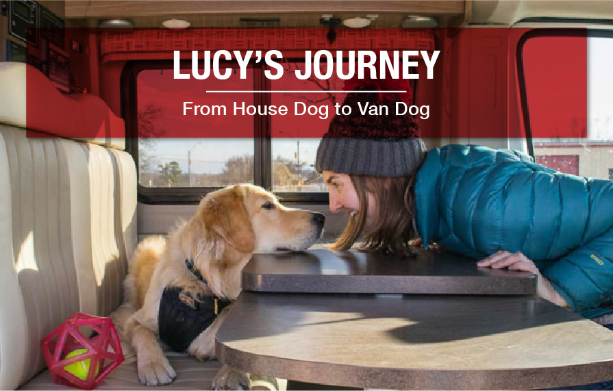 Tips for transitioning your dog to RV living  People always ask us about how Lucy, our Golden Retriever, deals with traveling in the van. After a full year of adventuring, we can confidently say that she is a full-on van dog…  11/02/2018