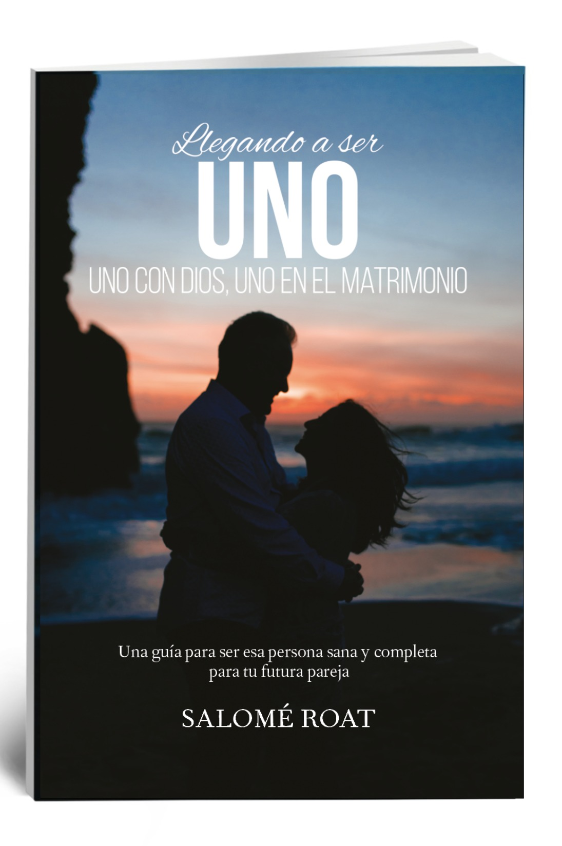 Spanish Book Cover.jpg