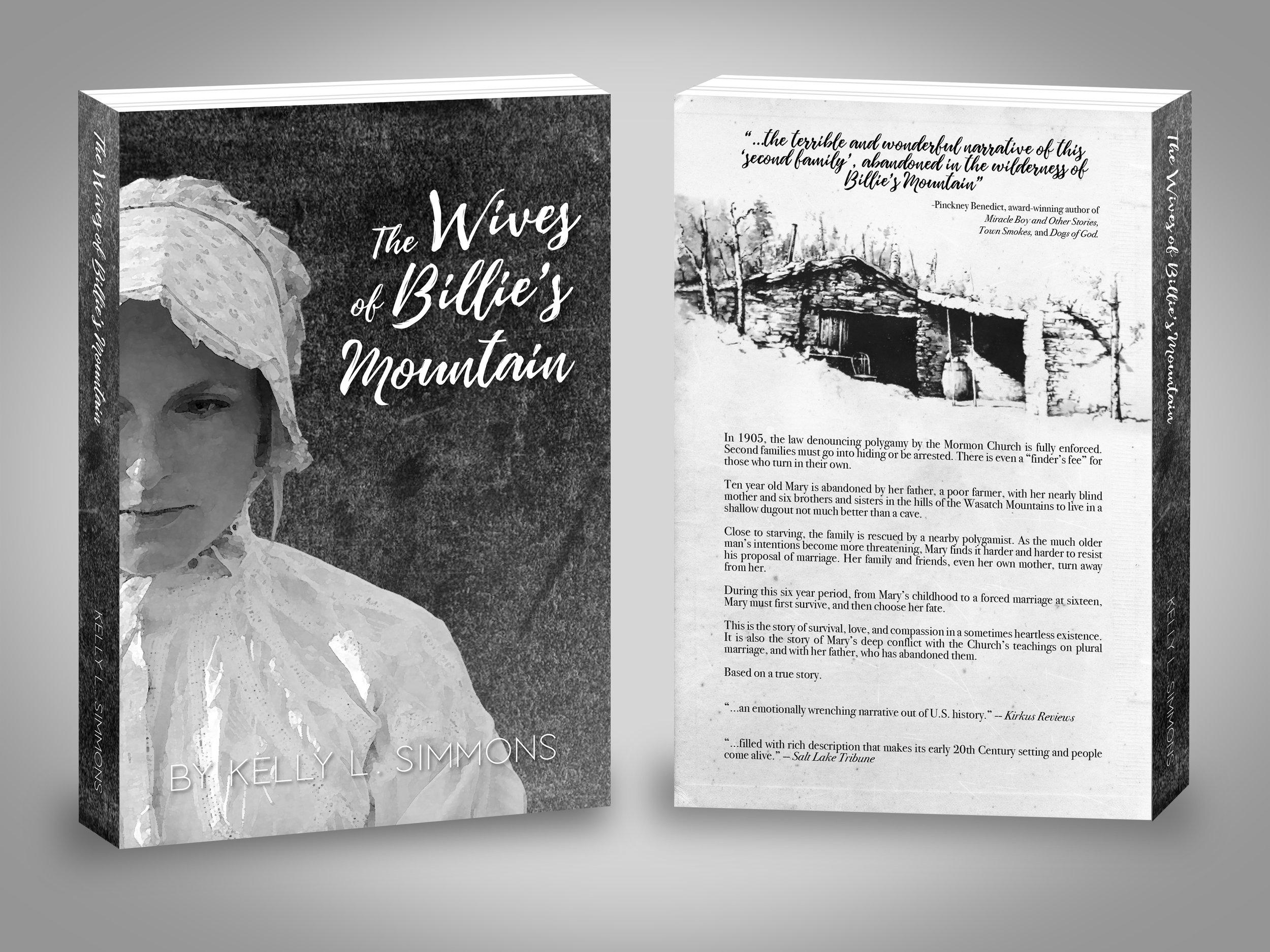 mormon, polygamy, polygamist, literature, fiction, novel, historical, history, turn of the century, women, woman, female, ex-mormom, exmormon, book cover