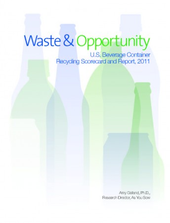 WasteOpportunity-2011-e1373660749972.jpg