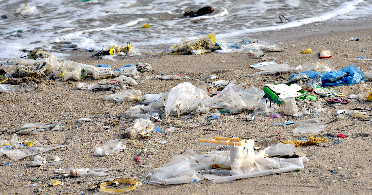 Why Are 'Sustainable' Companies Supporting Plastic Bag Lobbyists Instead of Respecting Local Community Rights to Reduce Litter?