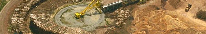Biomass -