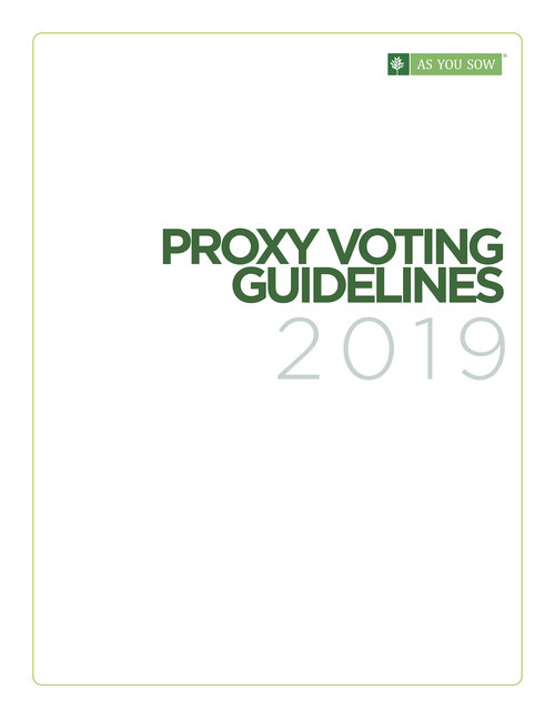 AYS_ProxyVoting-2019_proof02.jpg