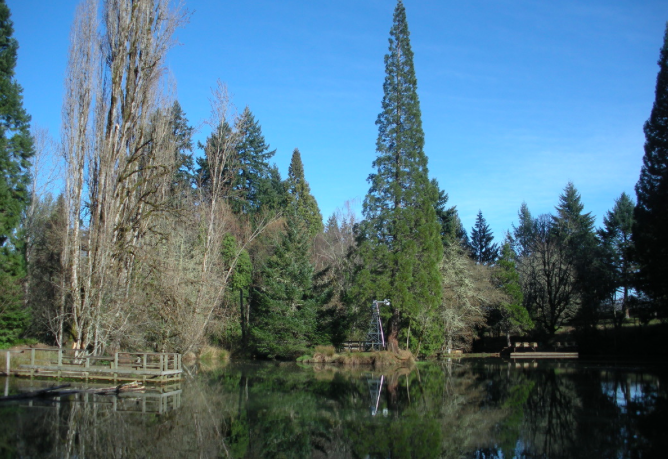 Trickle Creek, near Salem