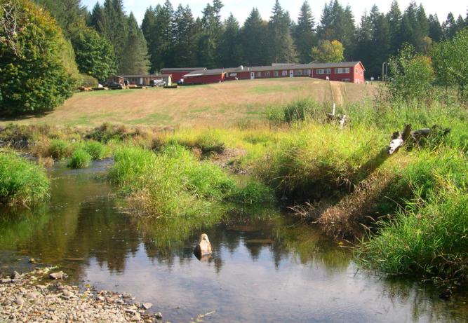 Cedar Ridge, outside Vernonia
