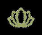 Lotus-150.png