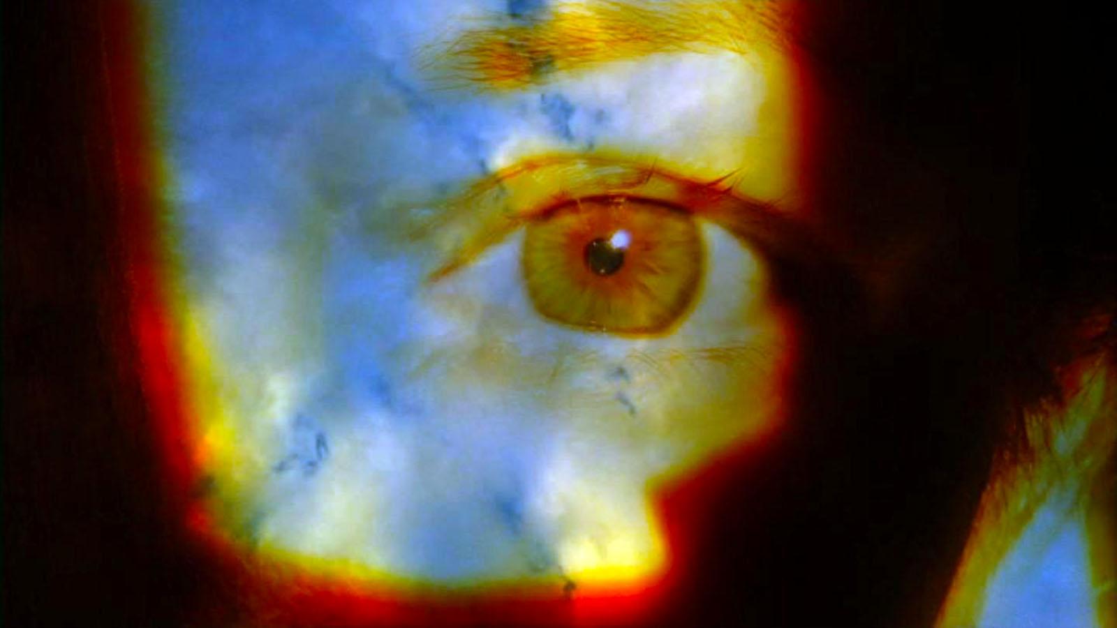 lynn-book-escapes-cloud-eye.jpg