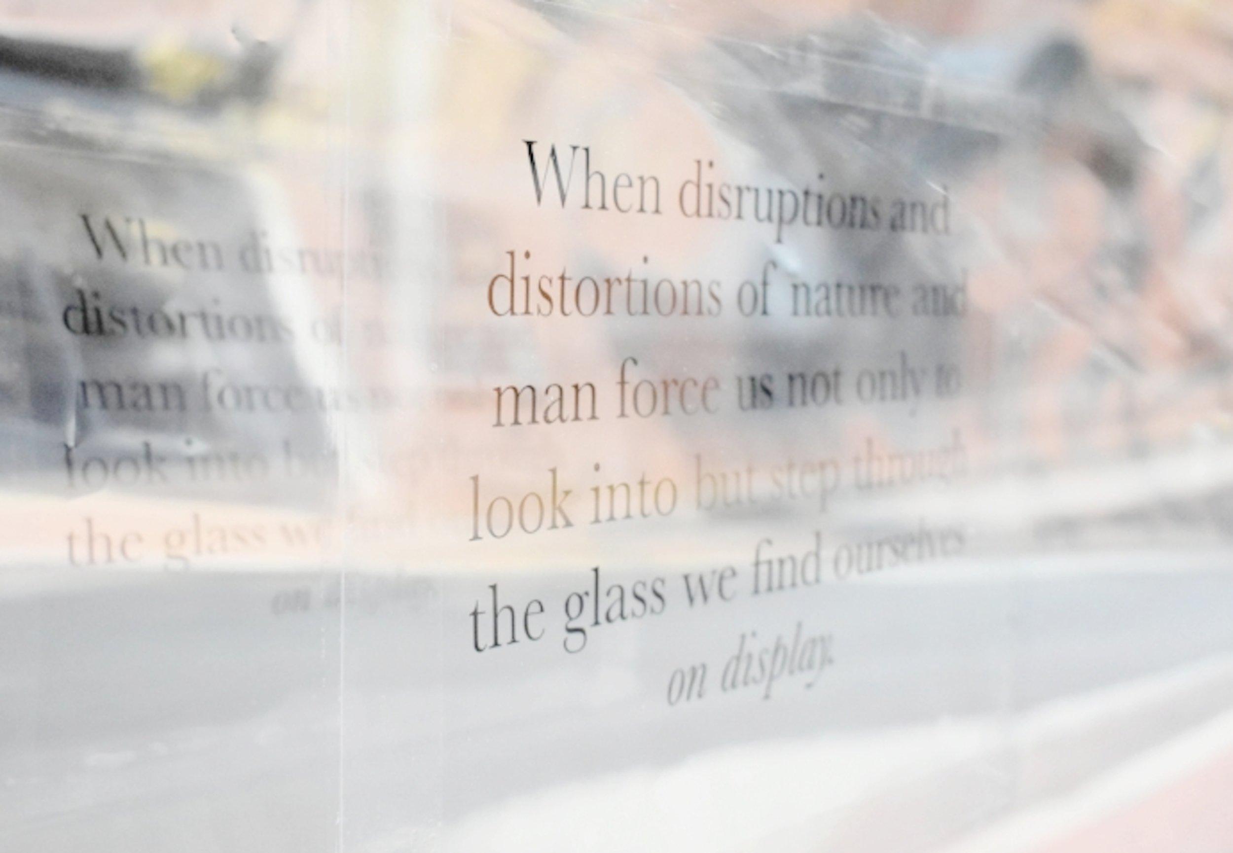 On Display (2017). Window installation by Robyn Thomas.
