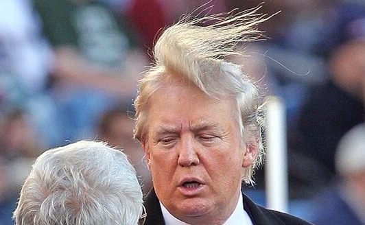 Donald Trump's combover blown over, source unknown.