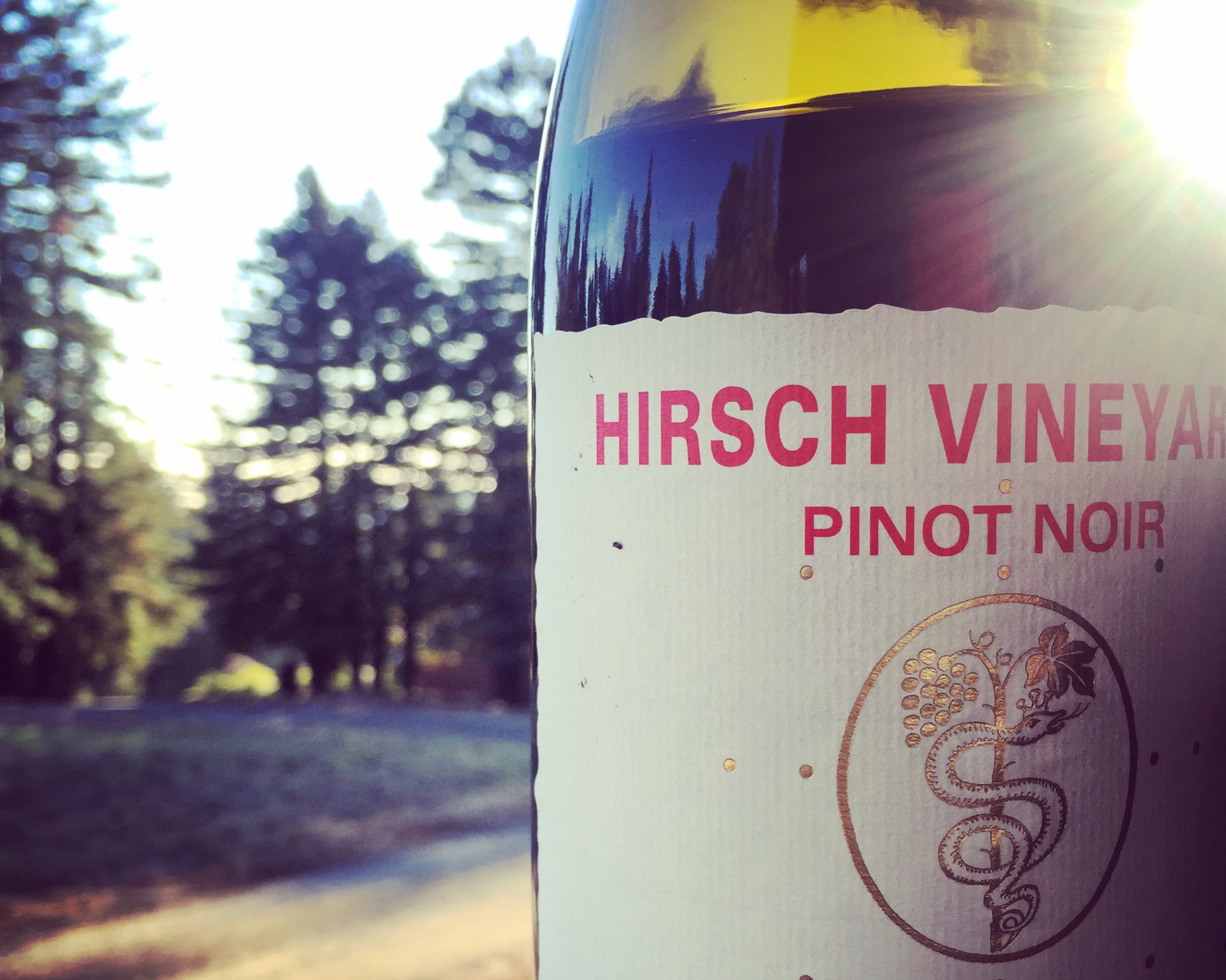 Foto: Hirsch Vineyards