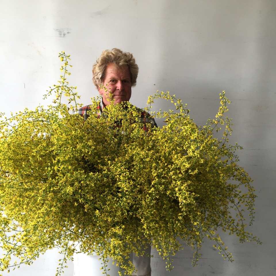 Charles Little, founder & co-owner, farmer and horticulturist, grower of cut flowers commercially since 1985.