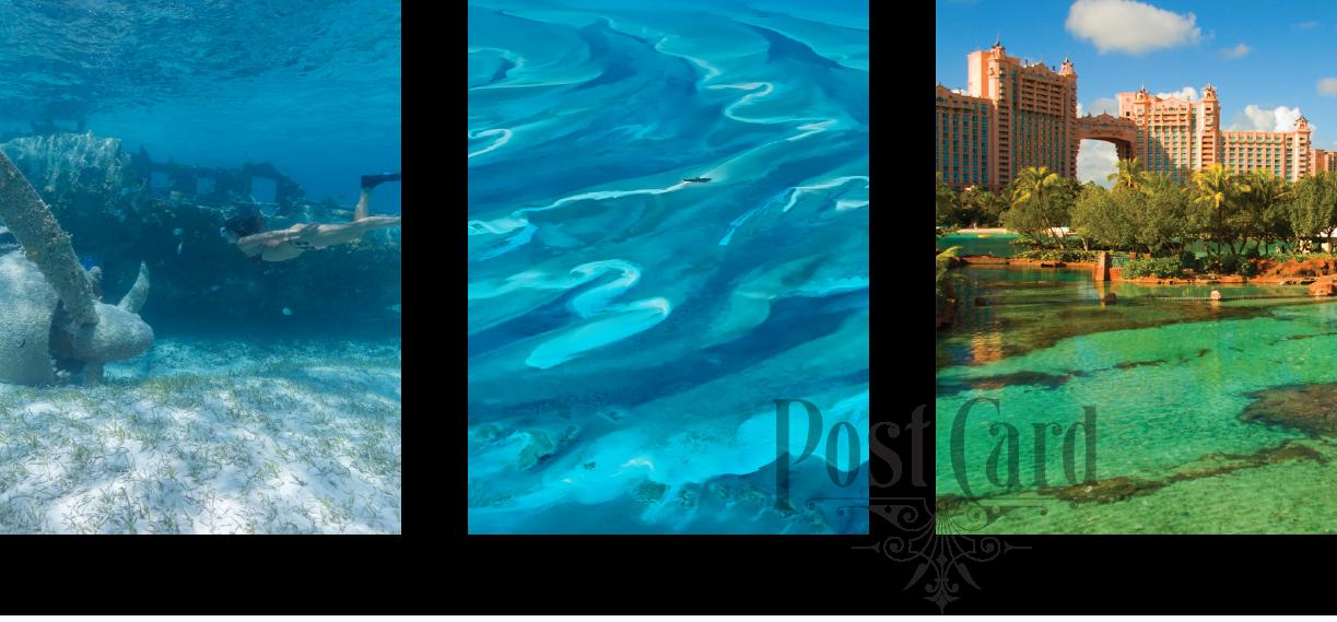 LADYJ-Cruise-Destination-Nassau-collage.png