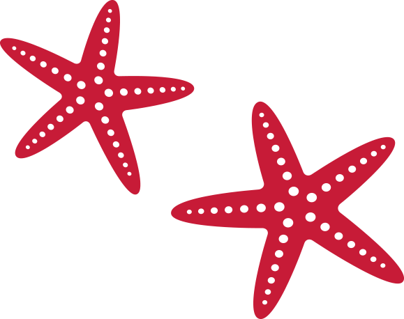 LADYJ-Art-Icons-Starfish-Red.png