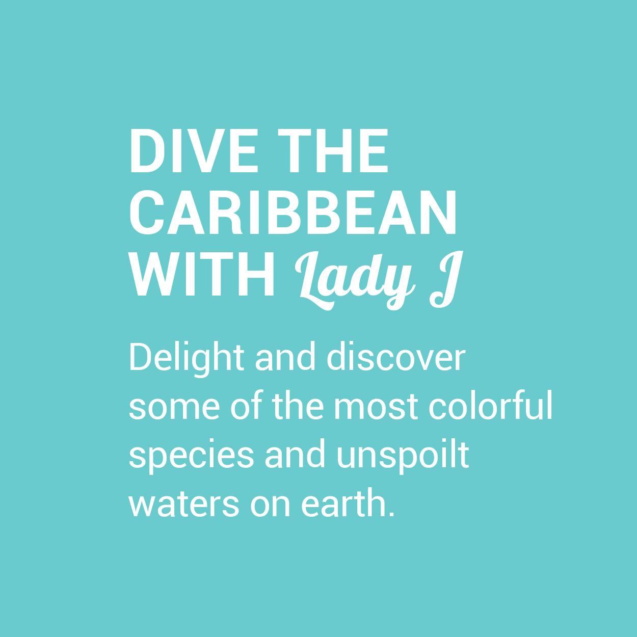 LJ_ART_Banner_SQ_Diving-Caribbean.jpg