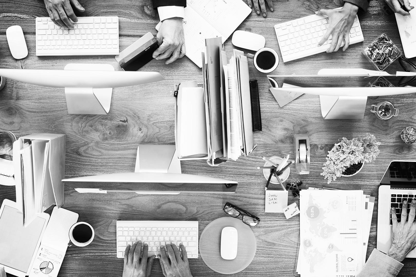 historia - Tras 8 años de estar trabajando para corporativos, empresas sociales, universidades y proyectos de freelance, nuestro apasionado equipo decidió reunirse para crear una agencia que asesore en el crecimiento y triple impacto de las empresas en México