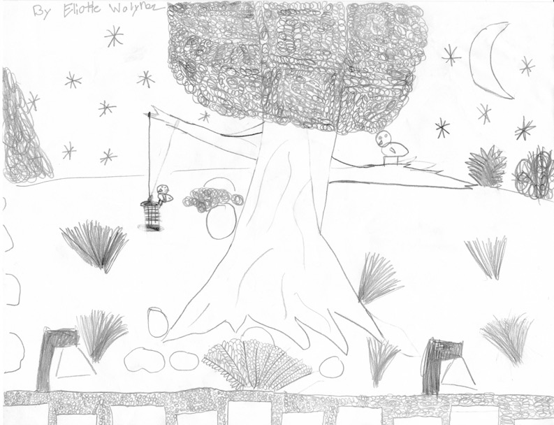 WILD KIDS DRAW WILD YARDS - Elliotte Wolynez (age 9) sent us this lovely drawing of her family's new native garden out here in Los Angeles. Elliotte enjoys hopping between the boulders which are situated in-between grasses and plants…along with the birds visiting the bird feeder.