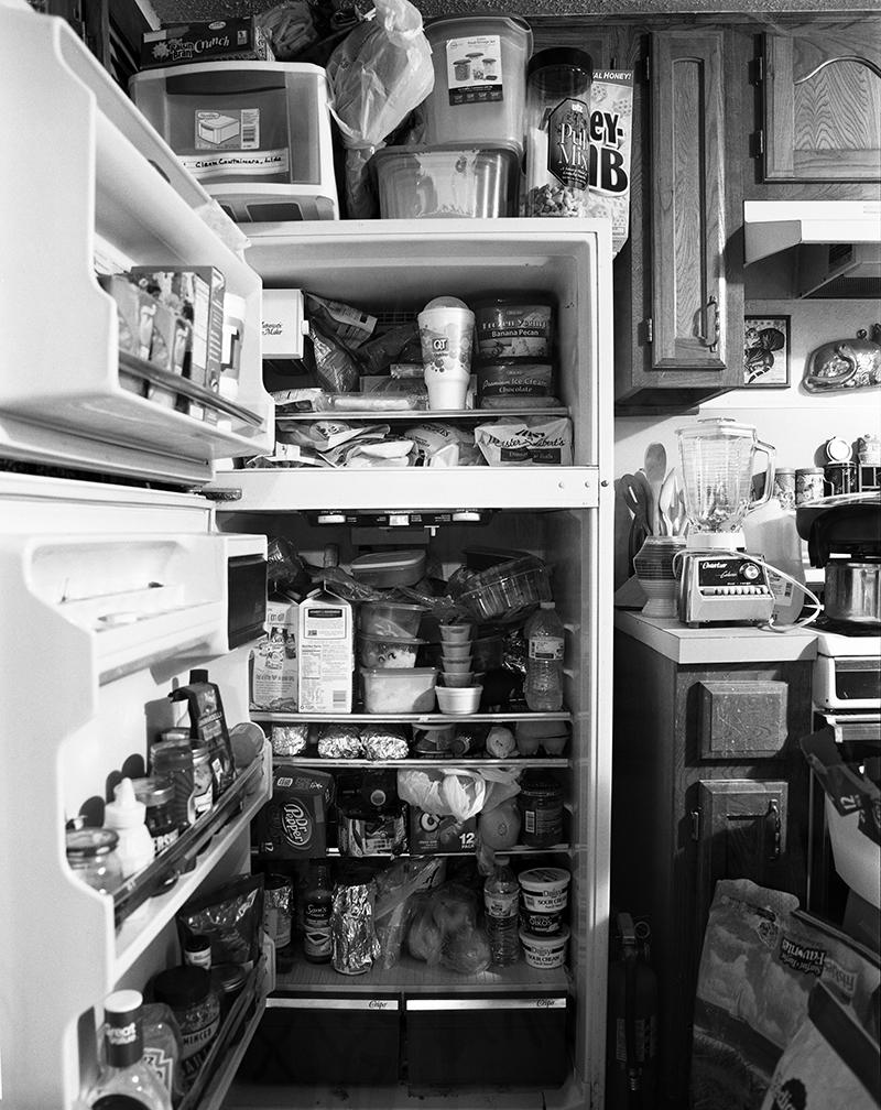 27 dana's fridge open118.jpg