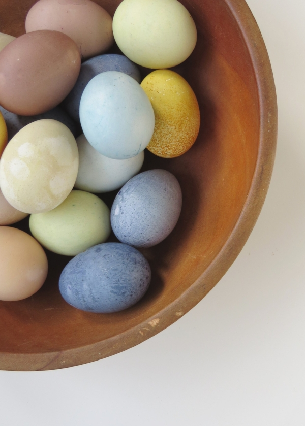 how to naturally dye easter eggs with no chemicals at Foraged Home.com