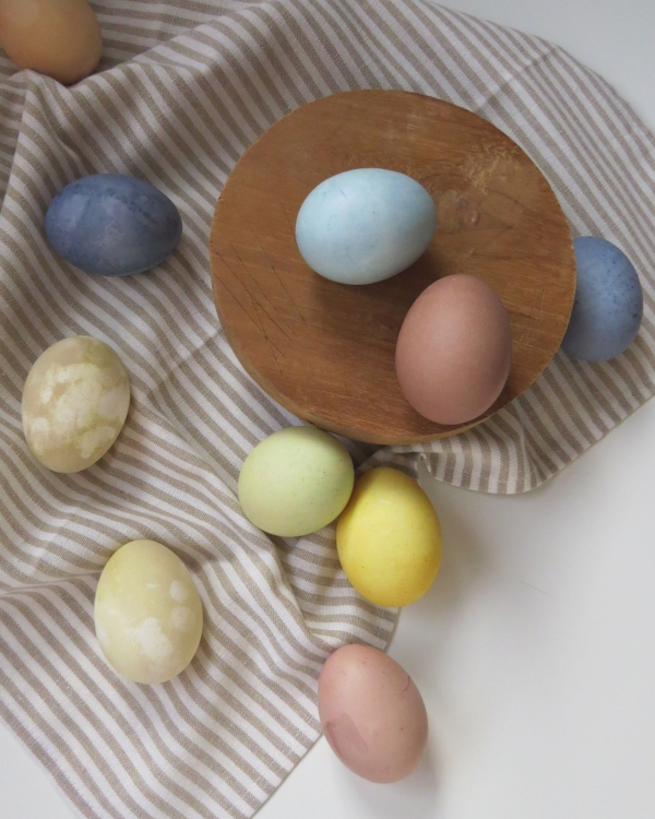 How to dye Easter Eggs pastel colors using natural products only at Foraged Home