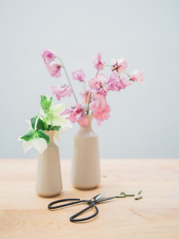 Simple grey bud vases with japanese sweet pea and hellebores