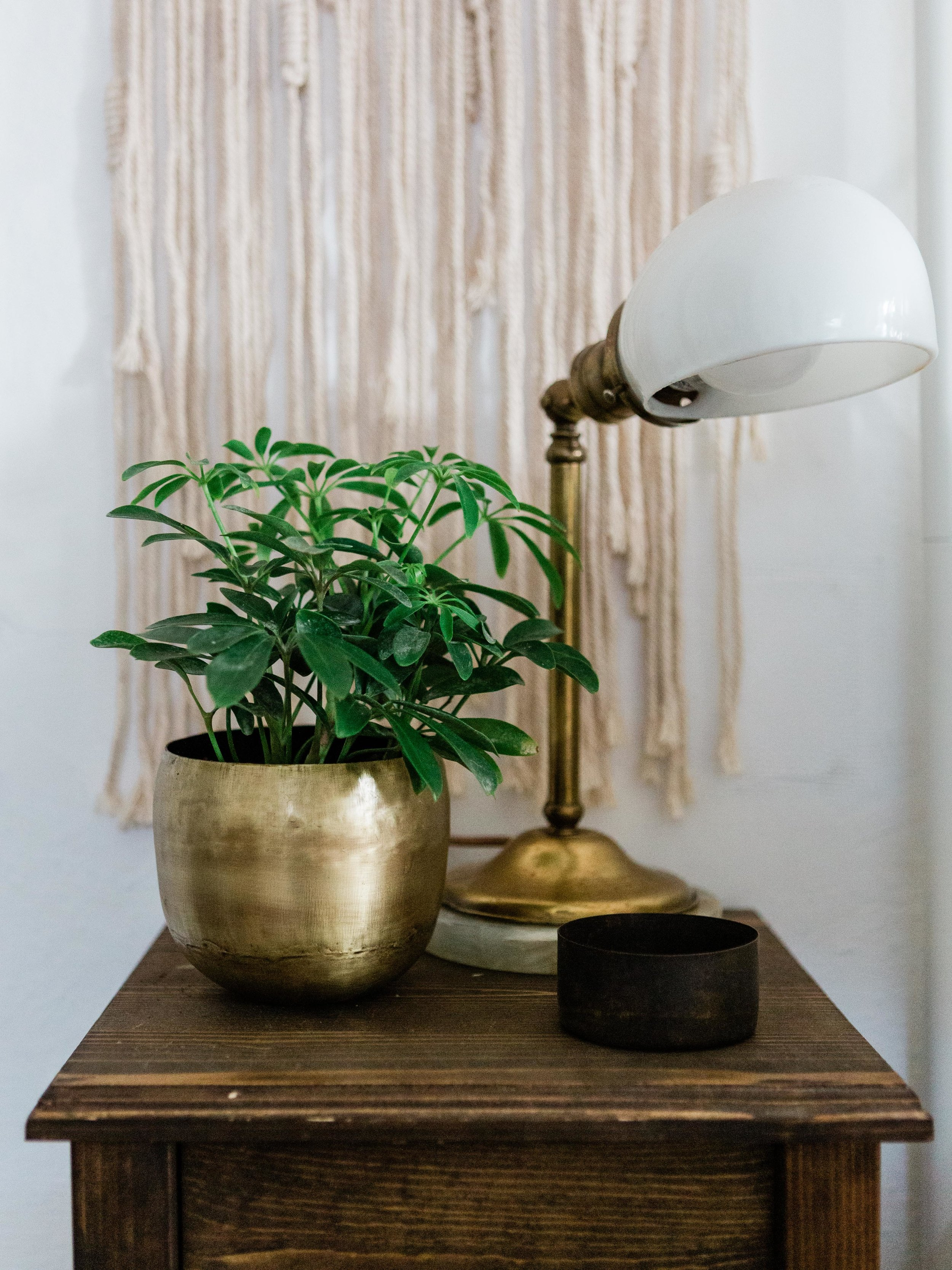 a snapshot of a guest room nightstand