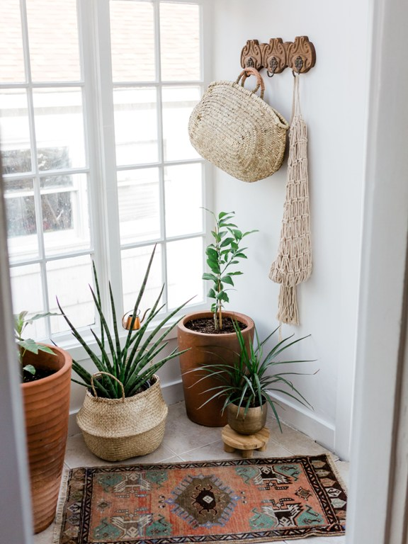Small sun room and plant room decor from Foraged Home