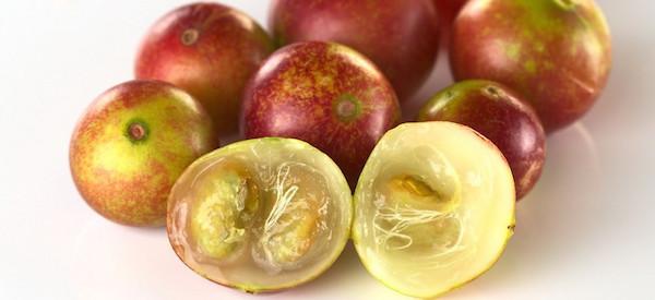 Camu Camu- Mi Vitamina C - La Vida Orgánica.jpg
