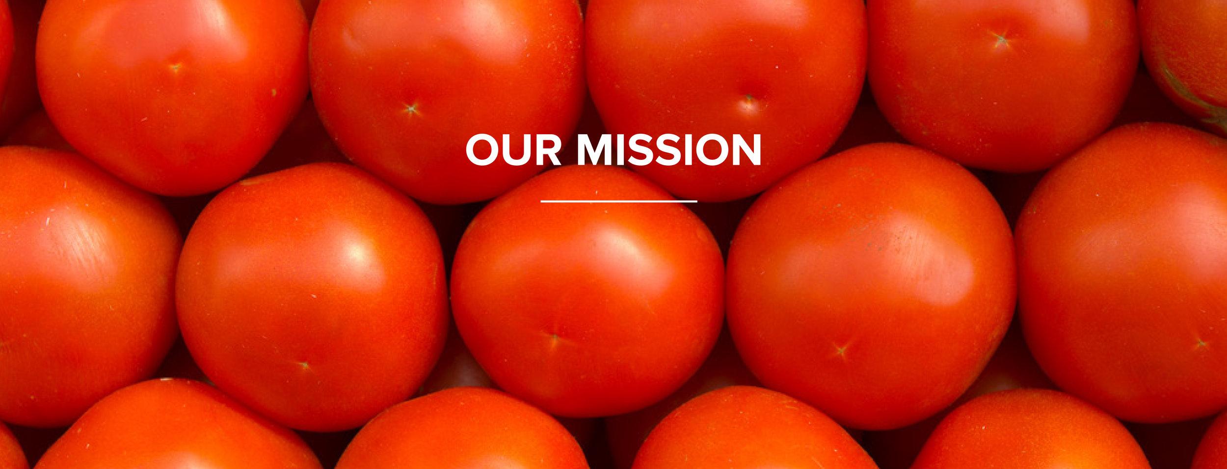 Home_Mission_2.jpg